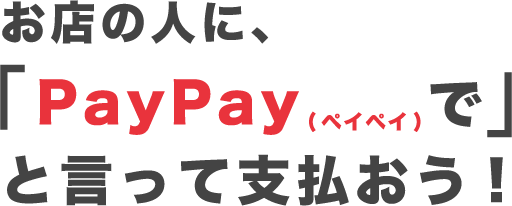 pay_05